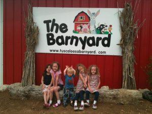 Tuscaloosa Barn Yard