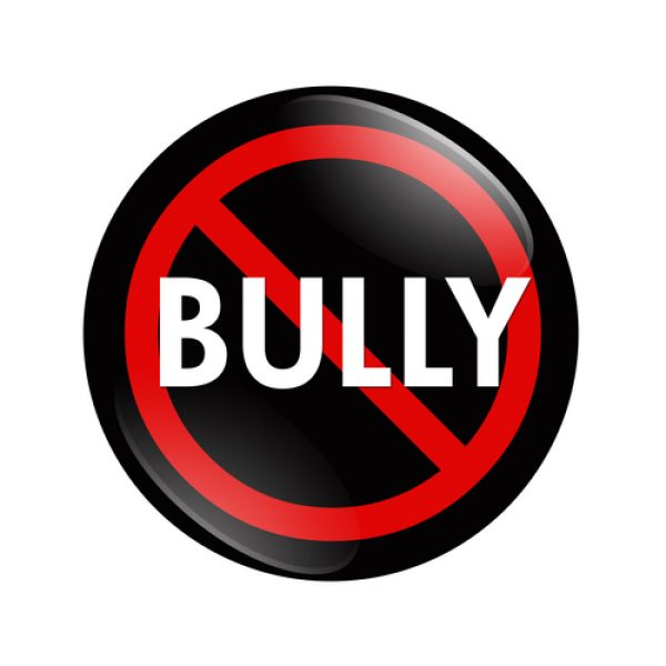 No Bully Graphic