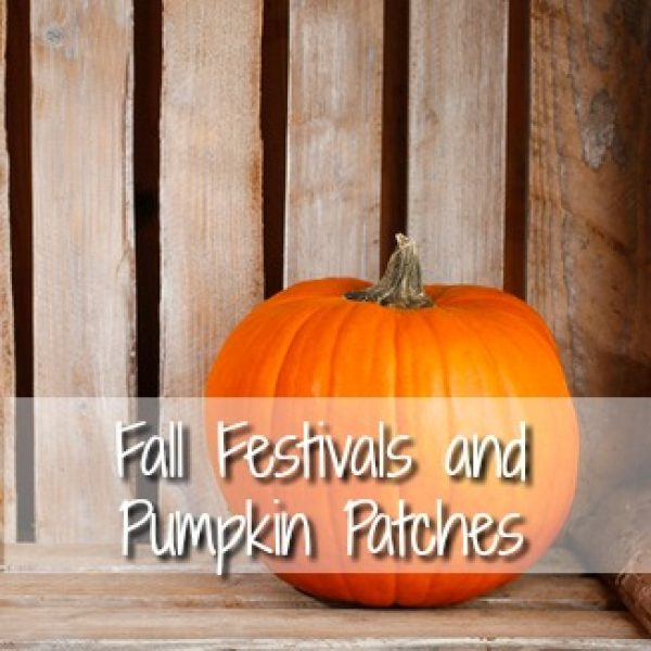 Fall Festivals and Pumpkin Patch list