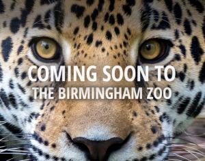 Spring Birmingham Zoo