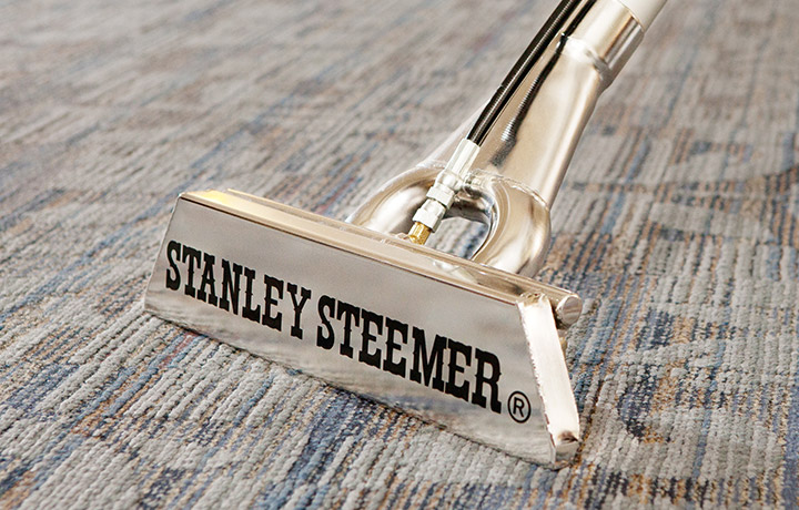 Stanley steemer carpet cleaner, cleaning carpet